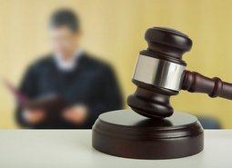 Новостройки Петербурга заменили офисами для судей